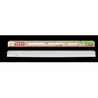 ASD Св-к СПБ-T8-ФИТО  8Вт 230В IP40 600мм для роста растений