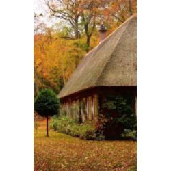 Инфракрасный плёночный обогреватель Осень